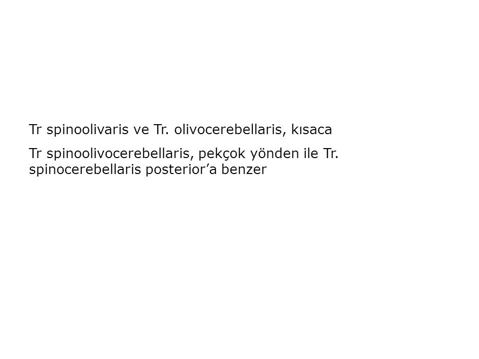 Tr spinoolivaris ve Tr. olivocerebellaris, kısaca