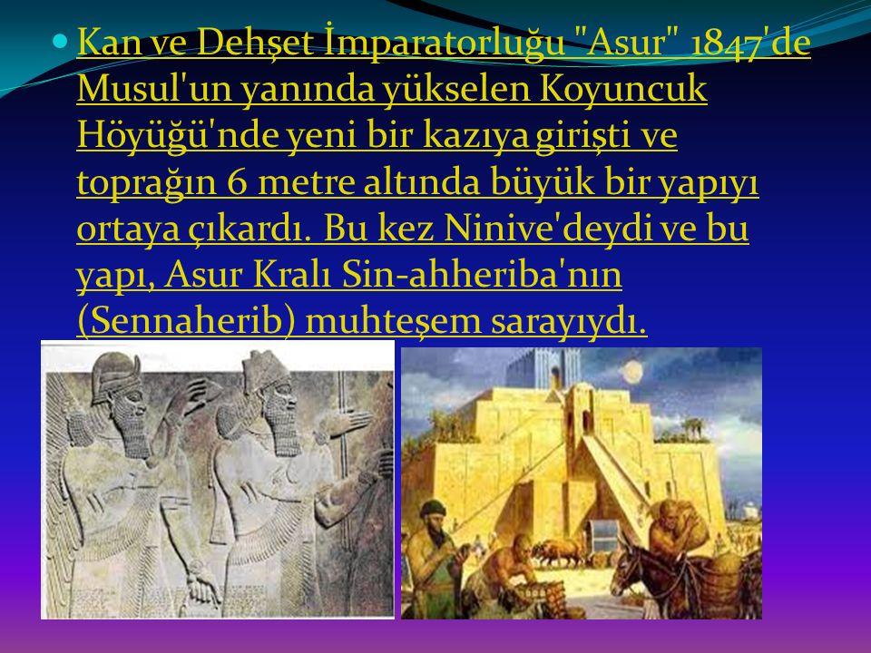 Kan ve Dehşet İmparatorluğu Asur 1847 de Musul un yanında yükselen Koyuncuk Höyüğü nde yeni bir kazıya girişti ve toprağın 6 metre altında büyük bir yapıyı ortaya çıkardı.