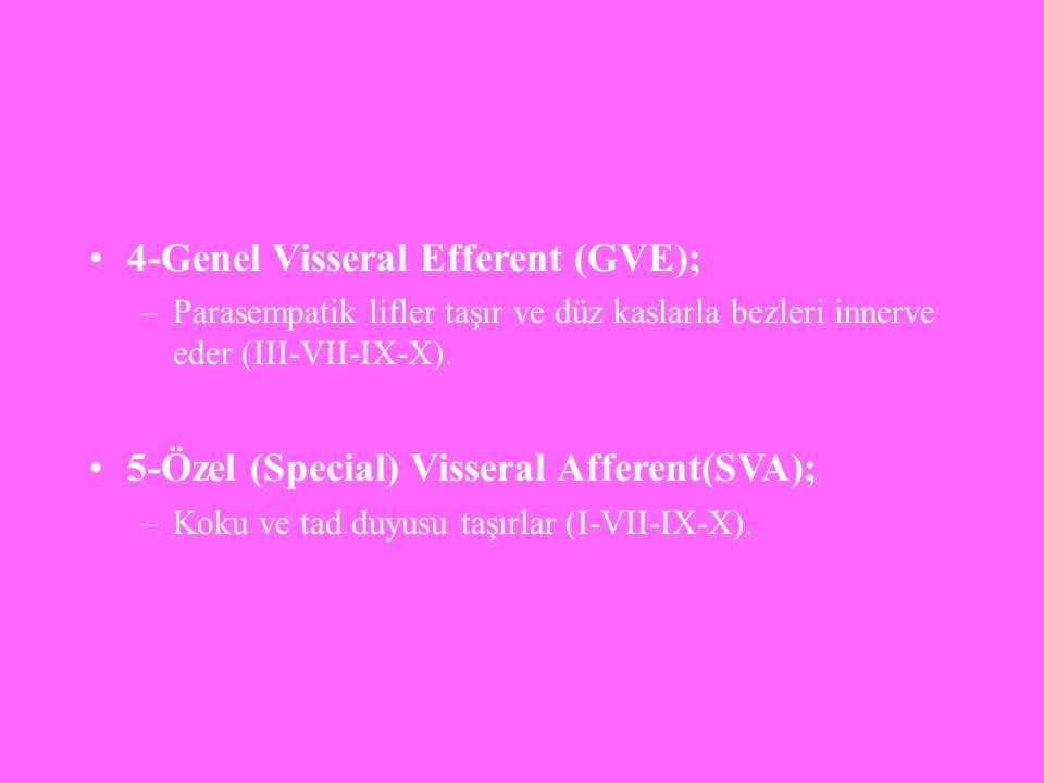 4-Genel Visseral Efferent (GVE);