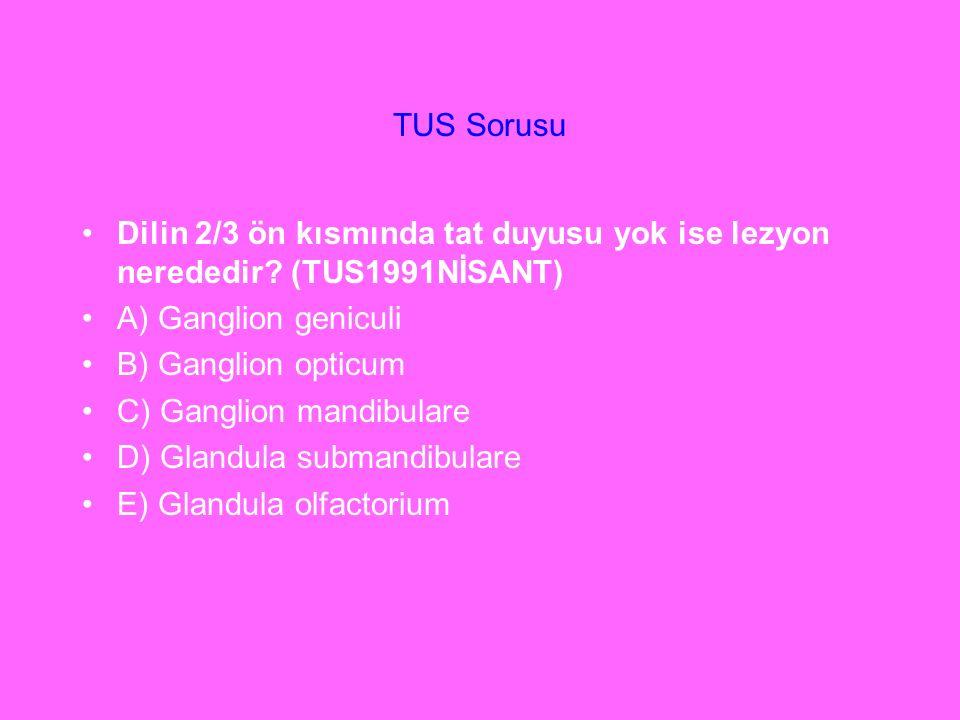 TUS Sorusu Dilin 2/3 ön kısmında tat duyusu yok ise lezyon nerededir (TUS1991NİSANT) A) Ganglion geniculi.