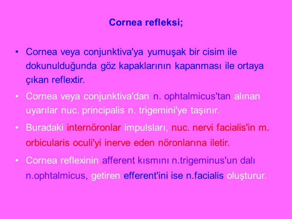 Cornea refleksi; Cornea veya conjunktiva ya yumuşak bir cisim ile dokunulduğunda göz kapaklarının kapanması ile ortaya çıkan reflextir.