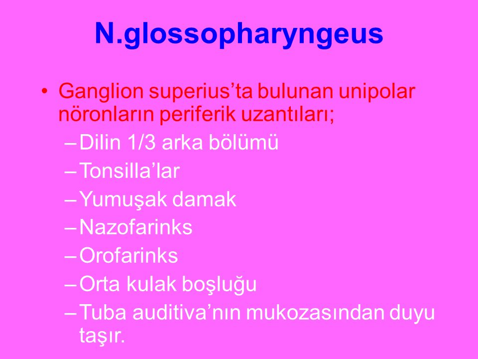 N.glossopharyngeus Ganglion superius'ta bulunan unipolar nöronların periferik uzantıları; Dilin 1/3 arka bölümü.