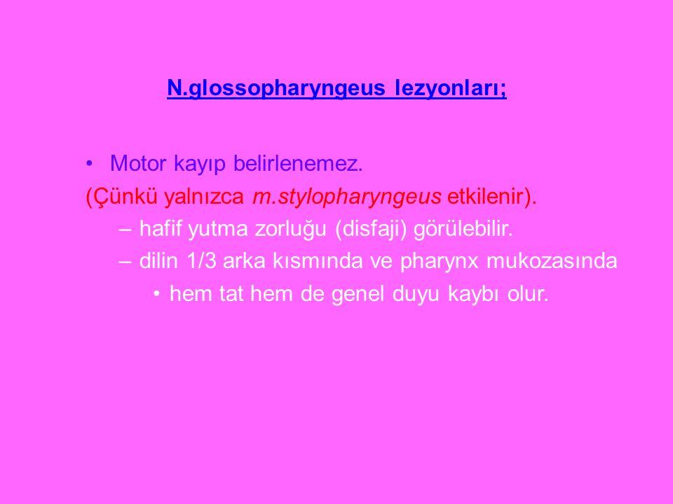 N.glossopharyngeus lezyonları;