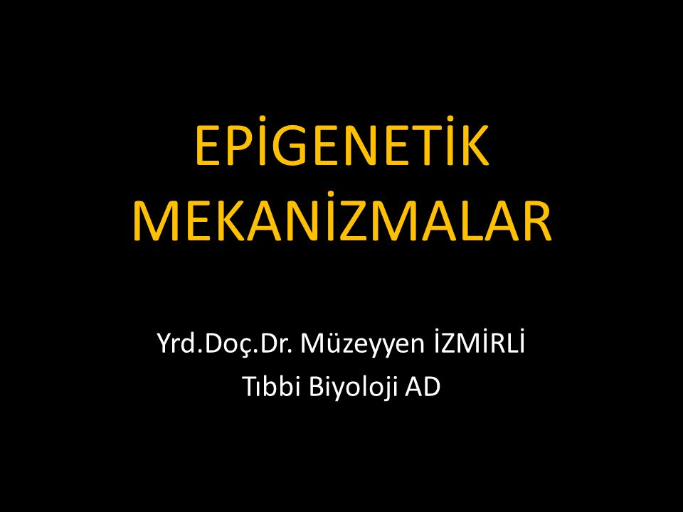 EPİGENETİK MEKANİZMALAR