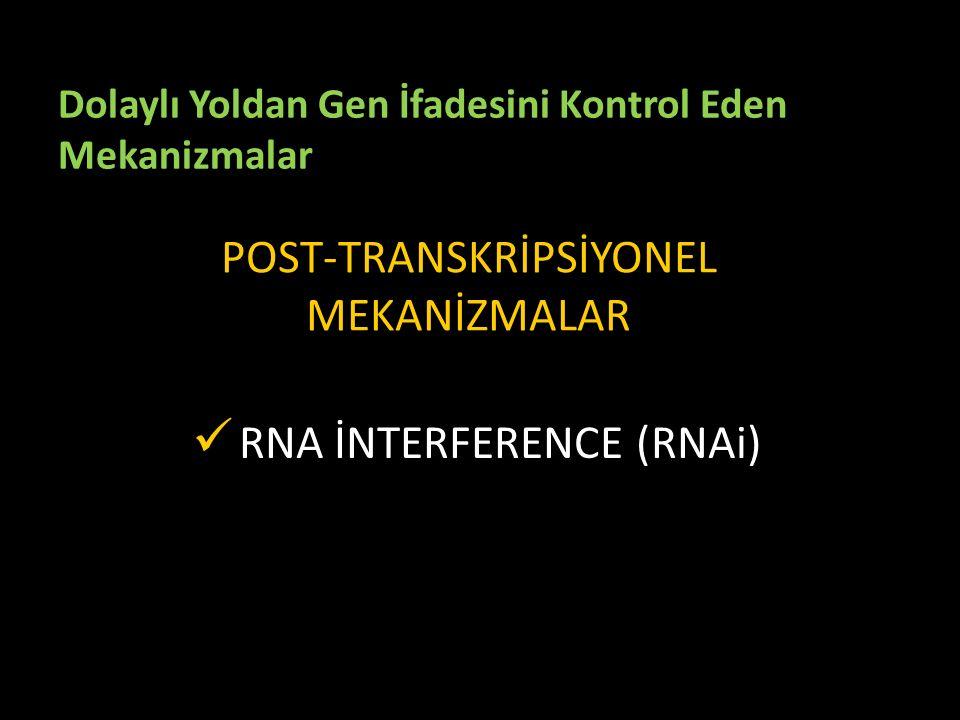 POST-TRANSKRİPSİYONEL MEKANİZMALAR