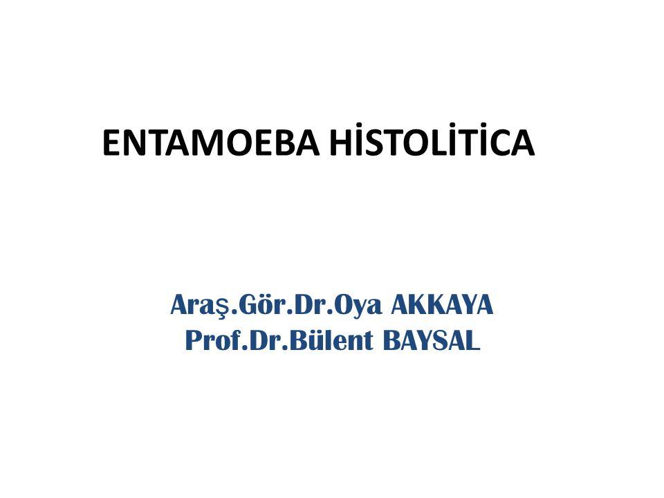 ENTAMOEBA HİSTOLİTİCA
