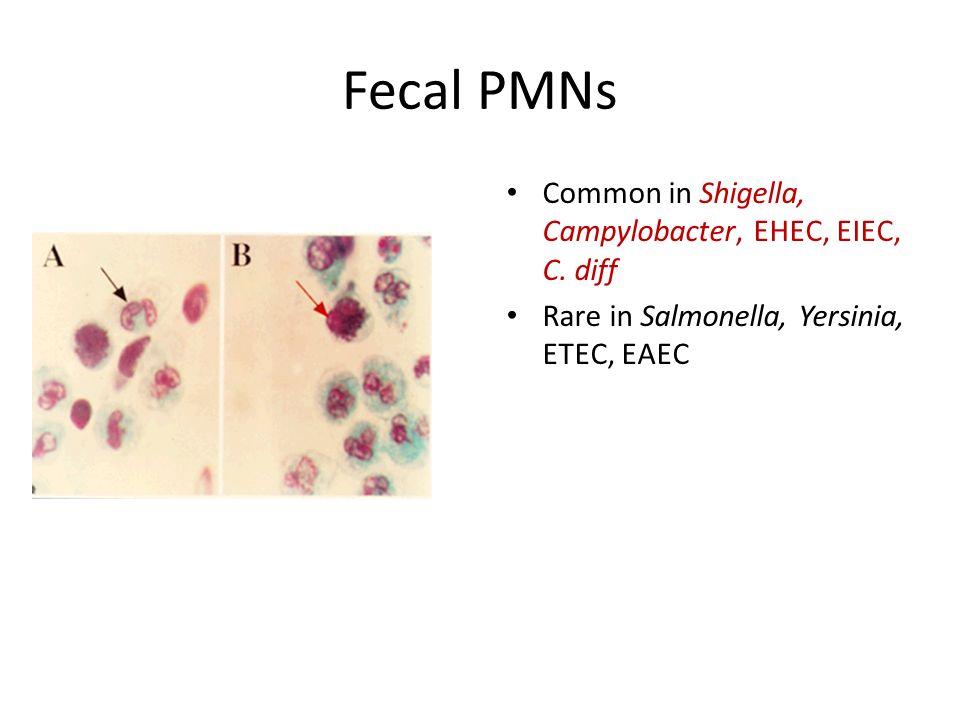 Fecal PMNs Common in Shigella, Campylobacter, EHEC, EIEC, C. diff