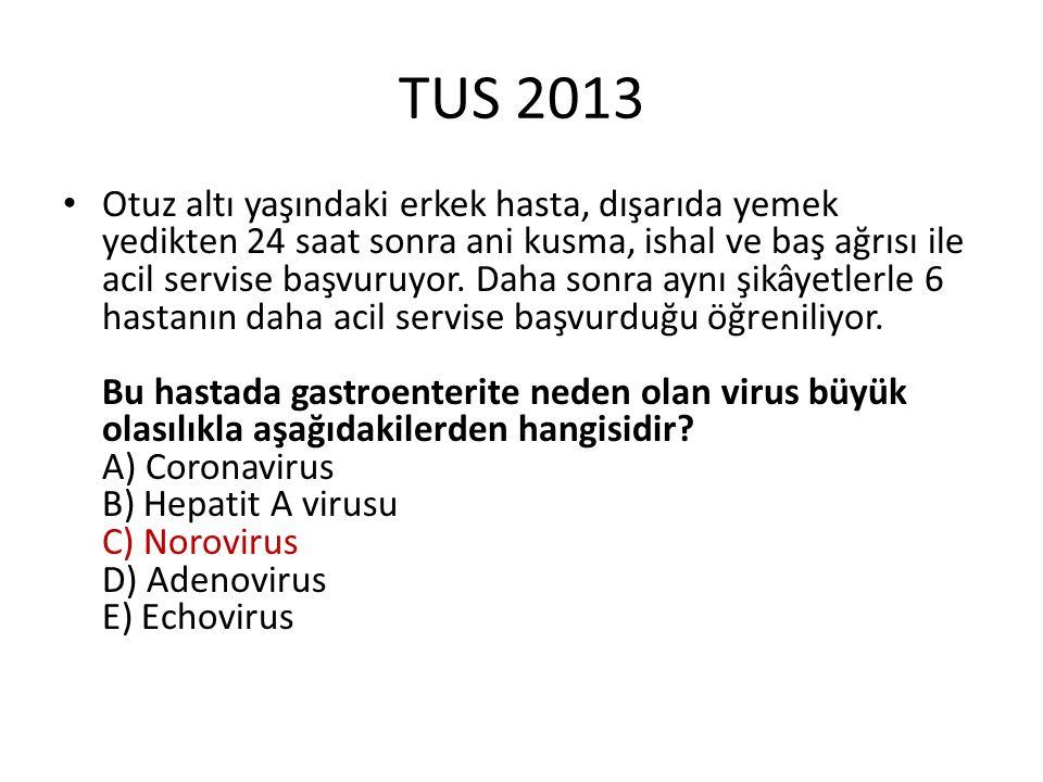 TUS 2013