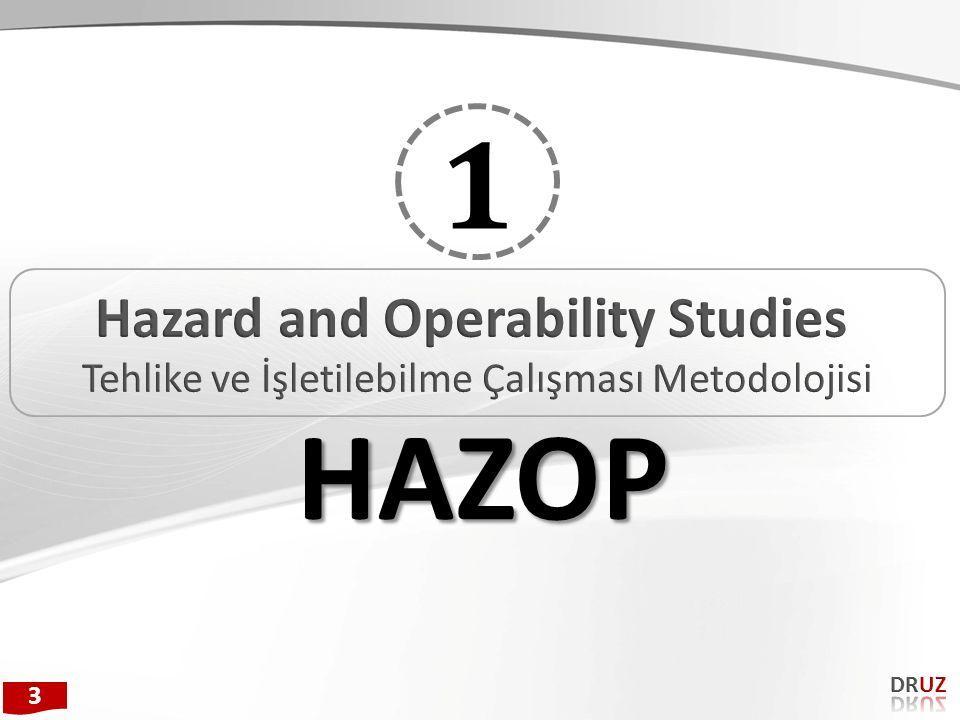 Hazard and Operability Studies