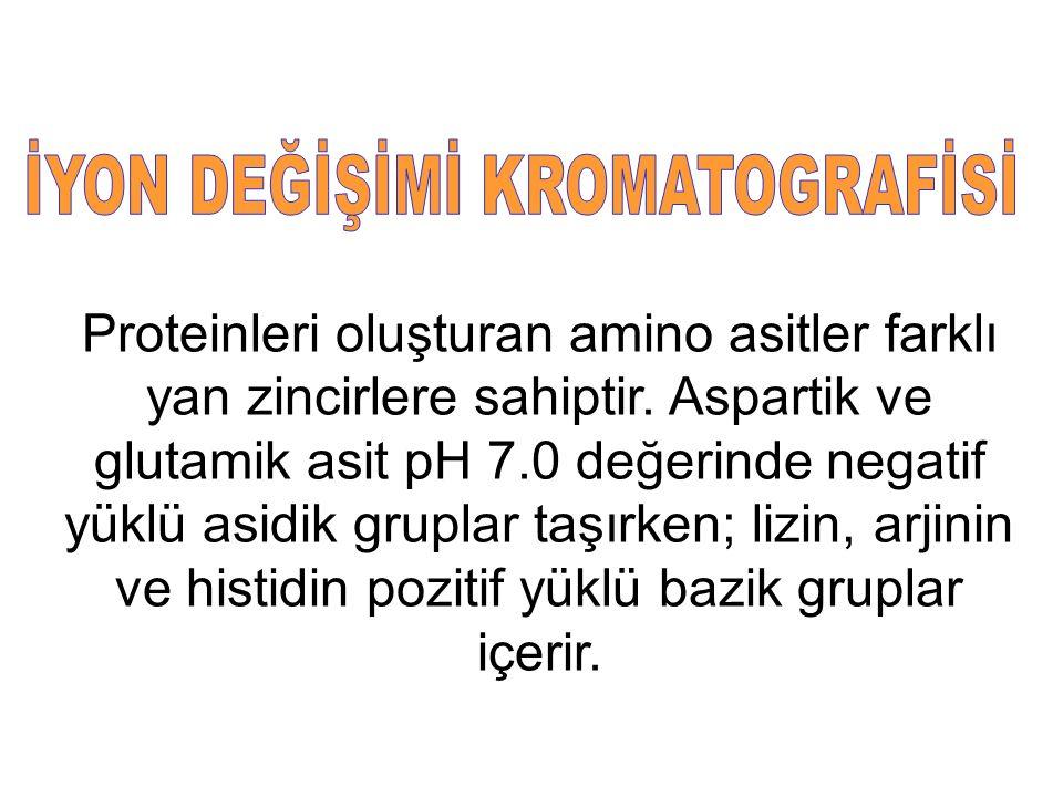 İYON DEĞİŞİMİ KROMATOGRAFİSİ