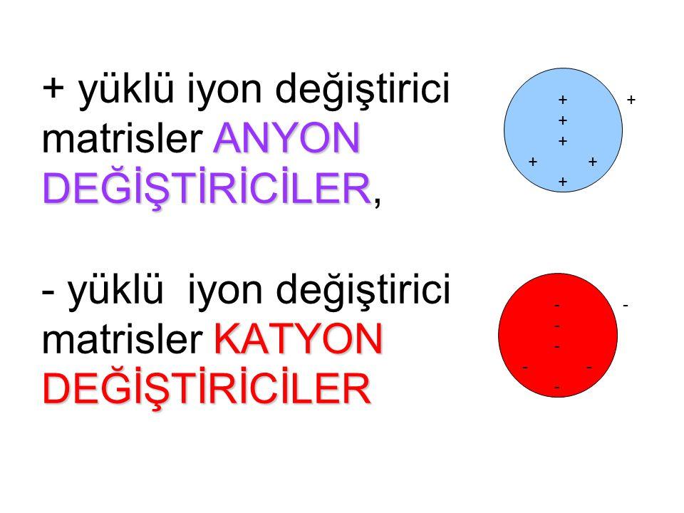 + yüklü iyon değiştirici matrisler ANYON DEĞİŞTİRİCİLER, - yüklü iyon değiştirici matrisler KATYON DEĞİŞTİRİCİLER
