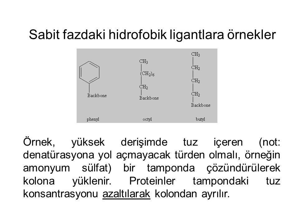 Sabit fazdaki hidrofobik ligantlara örnekler