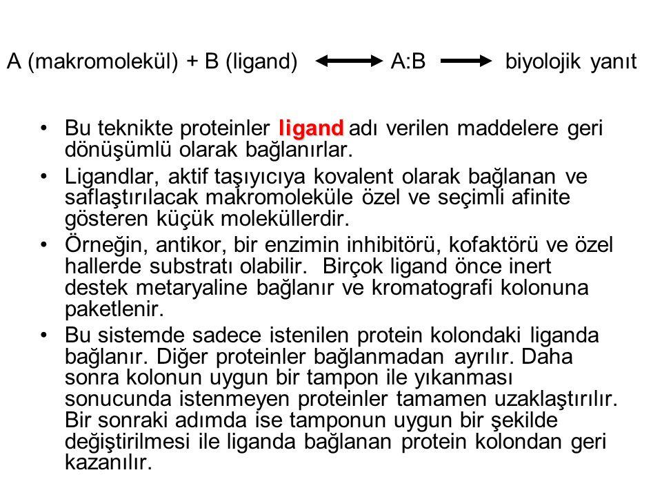 A (makromolekül) + B (ligand) A:B biyolojik yanıt