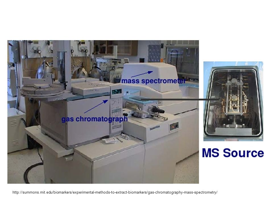 http://summons.mit.edu/biomarkers/experimental-methods-to-extract-biomarkers/gas-chromatography-mass-spectrometry/