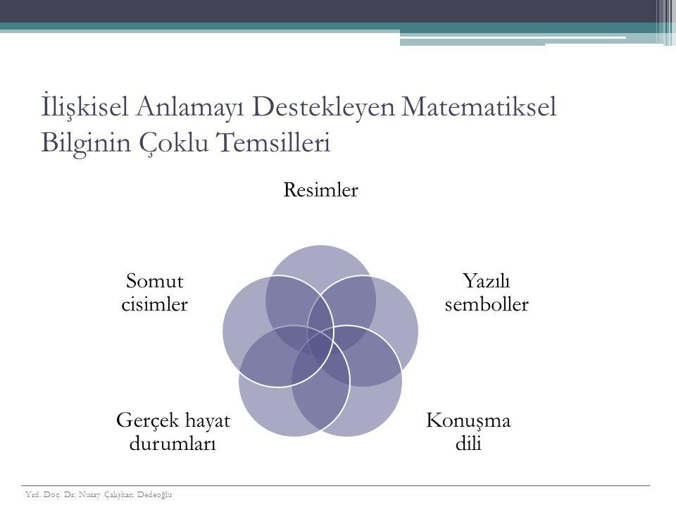 İlişkisel Anlamayı Destekleyen Matematiksel Bilginin Çoklu Temsilleri