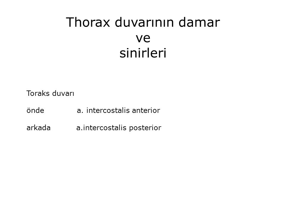 Thorax duvarının damar