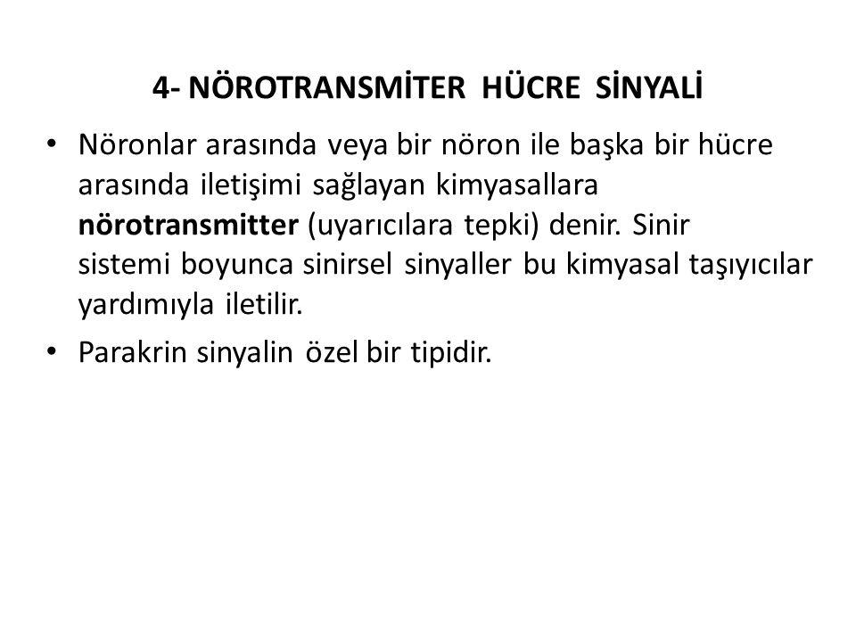 4- NÖROTRANSMİTER HÜCRE SİNYALİ