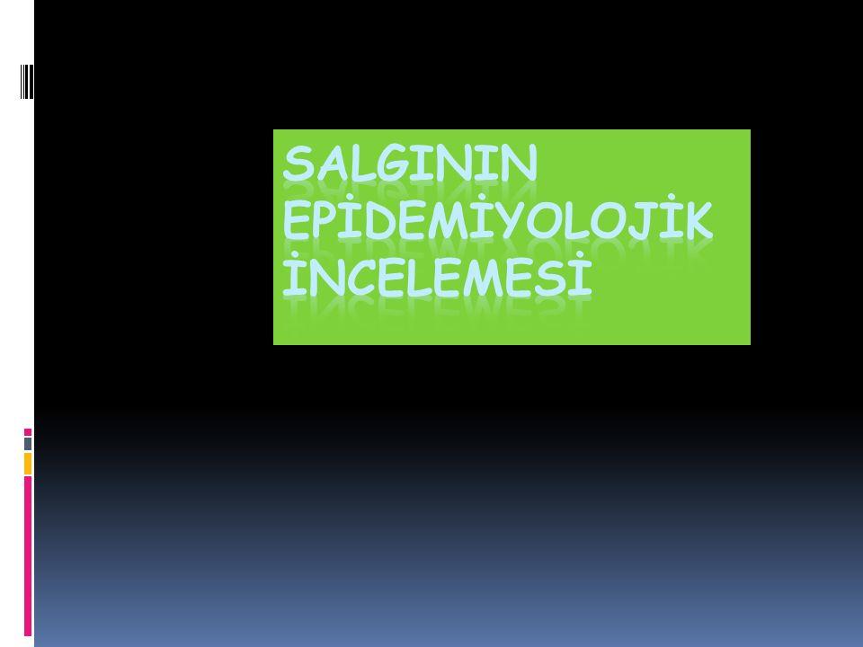 SALGININ EPİDEMİYOLOJİK İNCELEMESİ