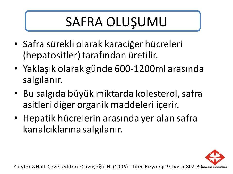 SAFRA OLUŞUMU Safra sürekli olarak karaciğer hücreleri (hepatositler) tarafından üretilir. Yaklaşık olarak günde 600-1200ml arasında salgılanır.