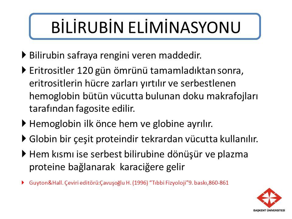 BİLİRUBİN ELİMİNASYONU