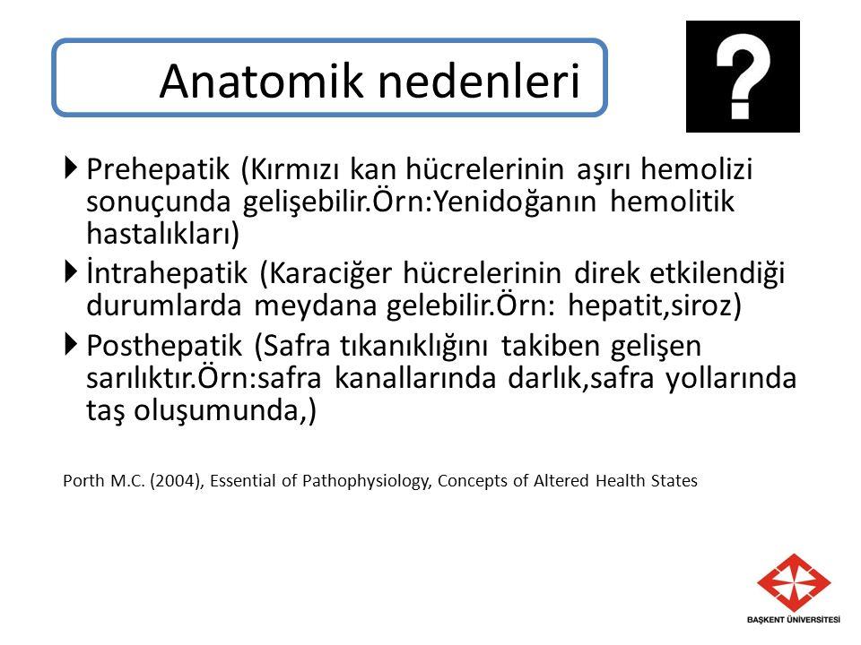 Anatomik nedenleri Prehepatik (Kırmızı kan hücrelerinin aşırı hemolizi sonuçunda gelişebilir.Örn:Yenidoğanın hemolitik hastalıkları)