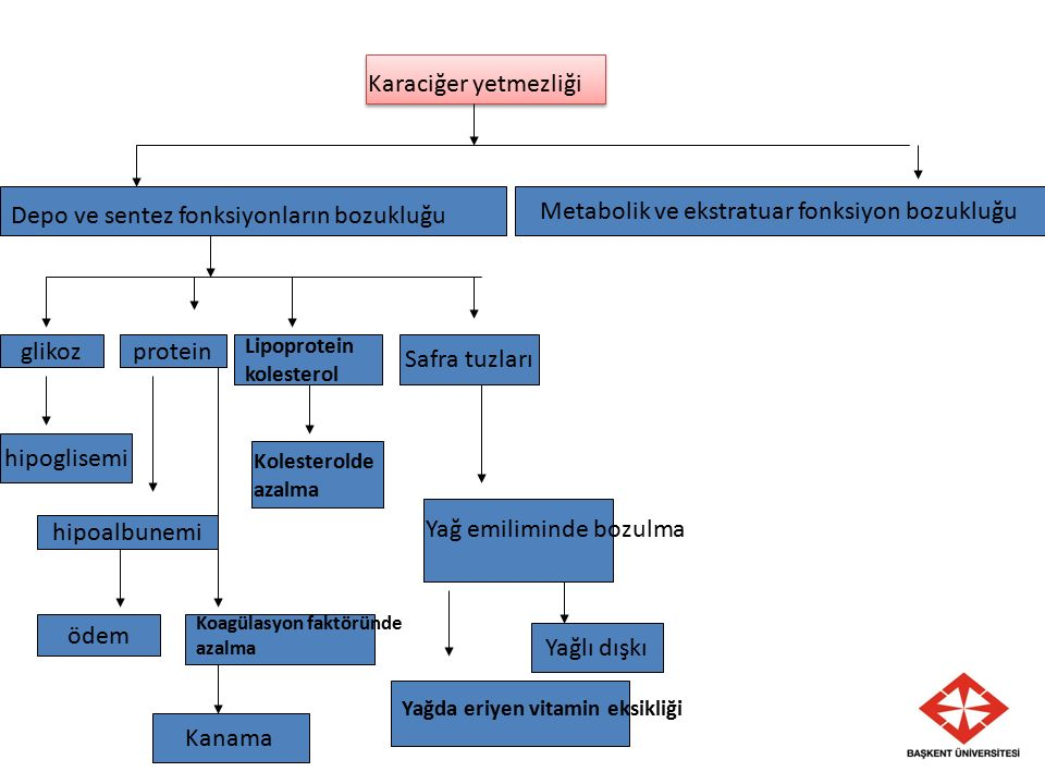 Metabolik ve ekstratuar fonksiyon bozukluğu