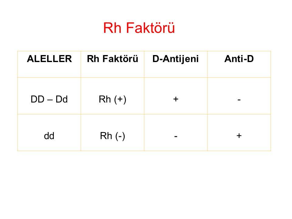 Rh Faktörü ALELLER Rh Faktörü D-Antijeni Anti-D DD – Dd Rh (+) + - dd