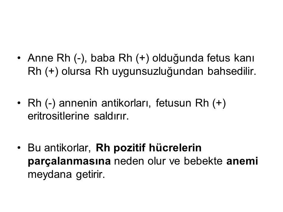Anne Rh (-), baba Rh (+) olduğunda fetus kanı Rh (+) olursa Rh uygunsuzluğundan bahsedilir.