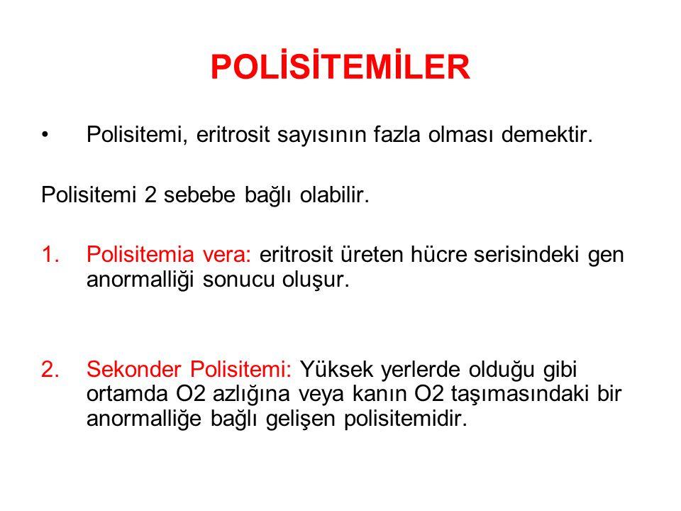 POLİSİTEMİLER Polisitemi, eritrosit sayısının fazla olması demektir.
