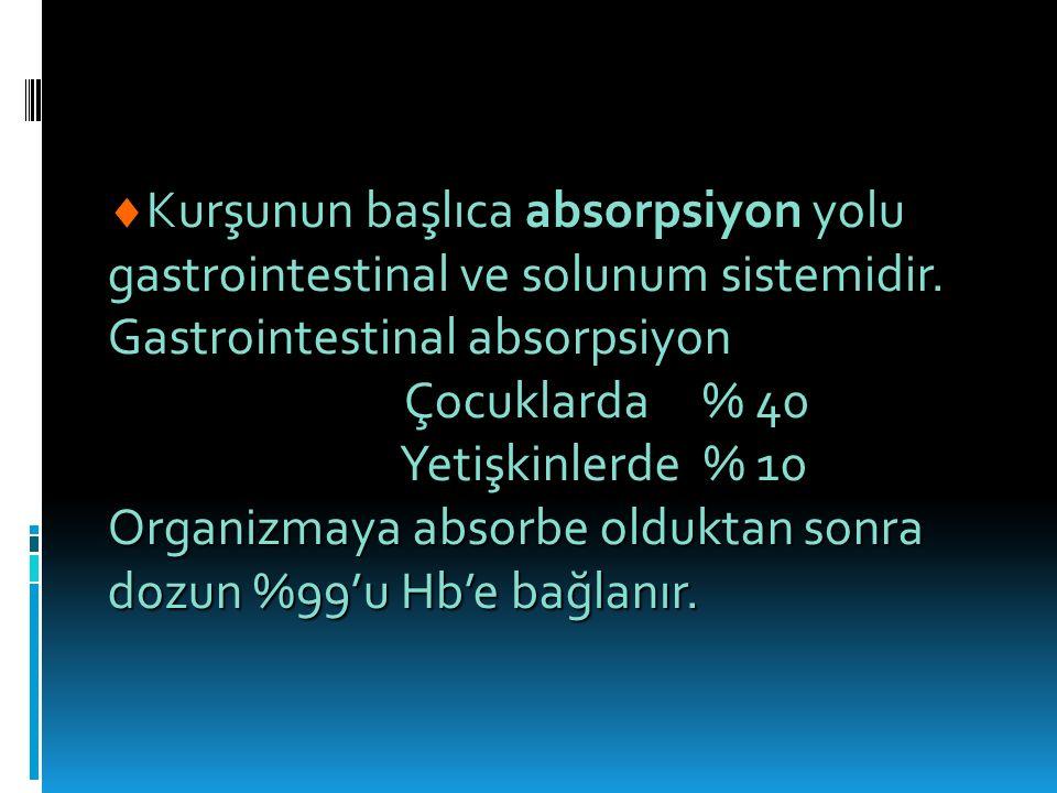 Gastrointestinal absorpsiyon Çocuklarda % 40 Yetişkinlerde % 10