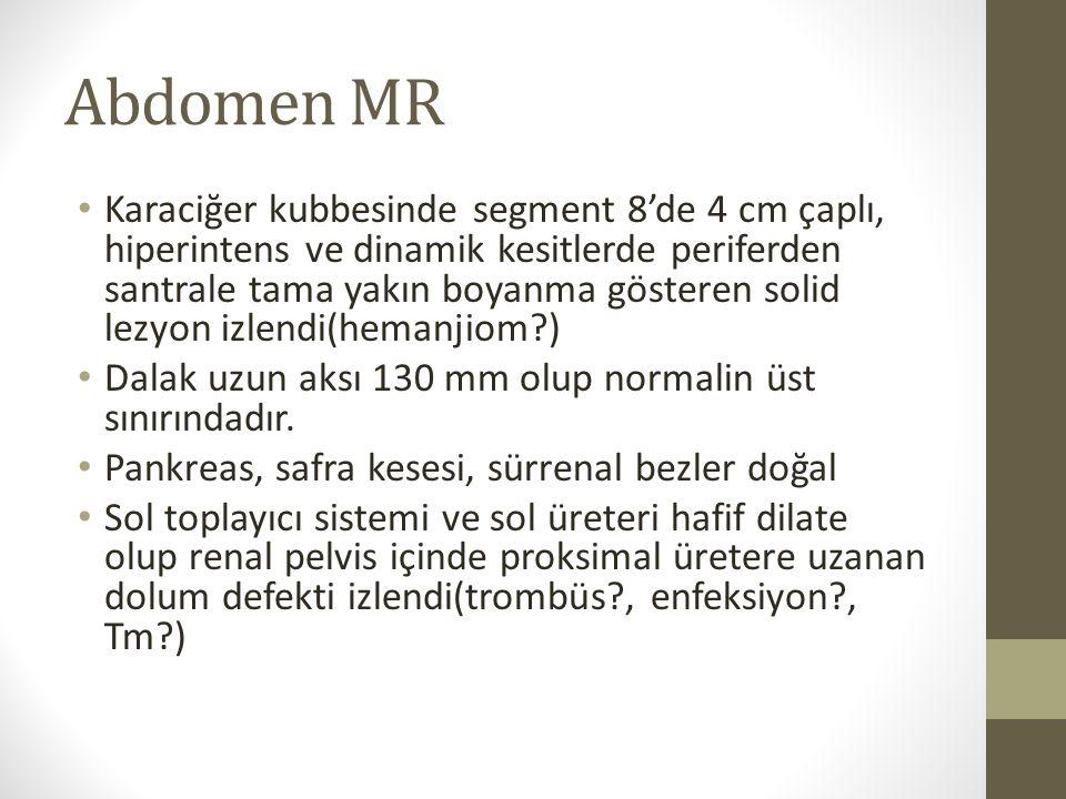 Abdomen MR