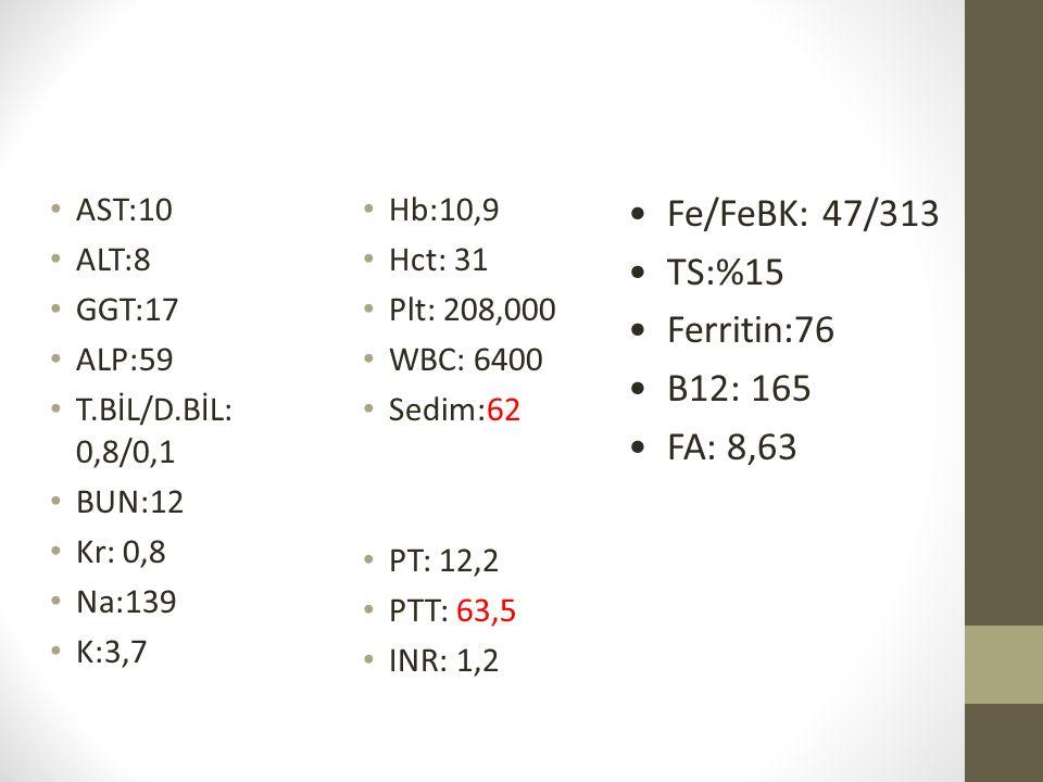 Fe/FeBK: 47/313 TS:%15 Ferritin:76 B12: 165 FA: 8,63 AST:10 ALT:8