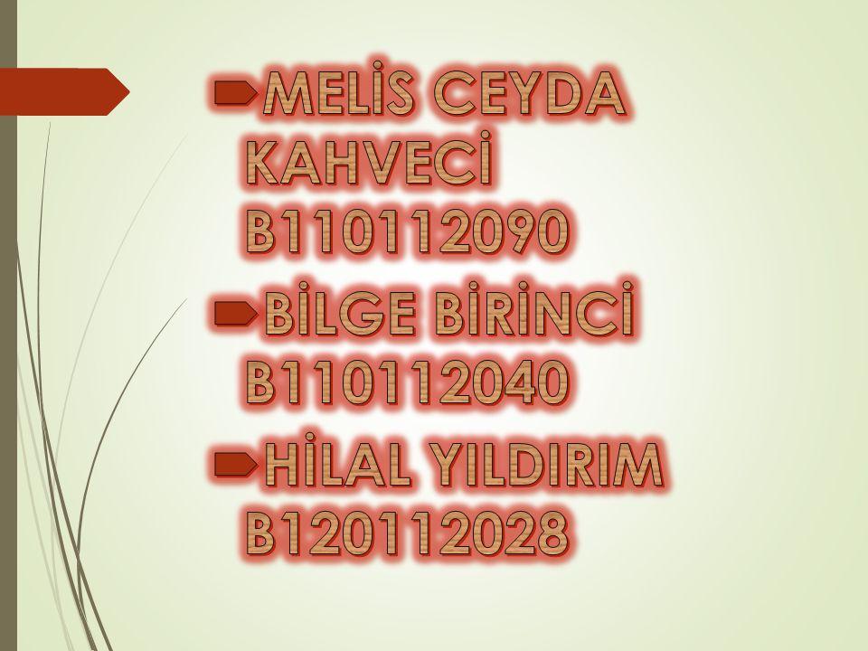 MELİS CEYDA KAHVECİ B110112090 BİLGE BİRİNCİ B110112040 HİLAL YILDIRIM B120112028