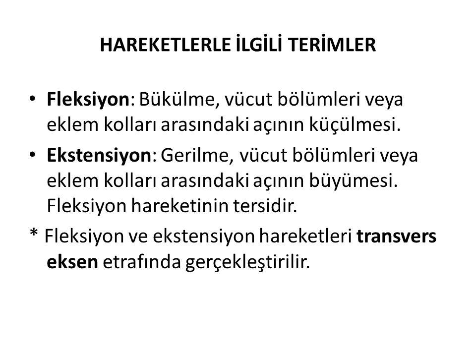HAREKETLERLE İLGİLİ TERİMLER