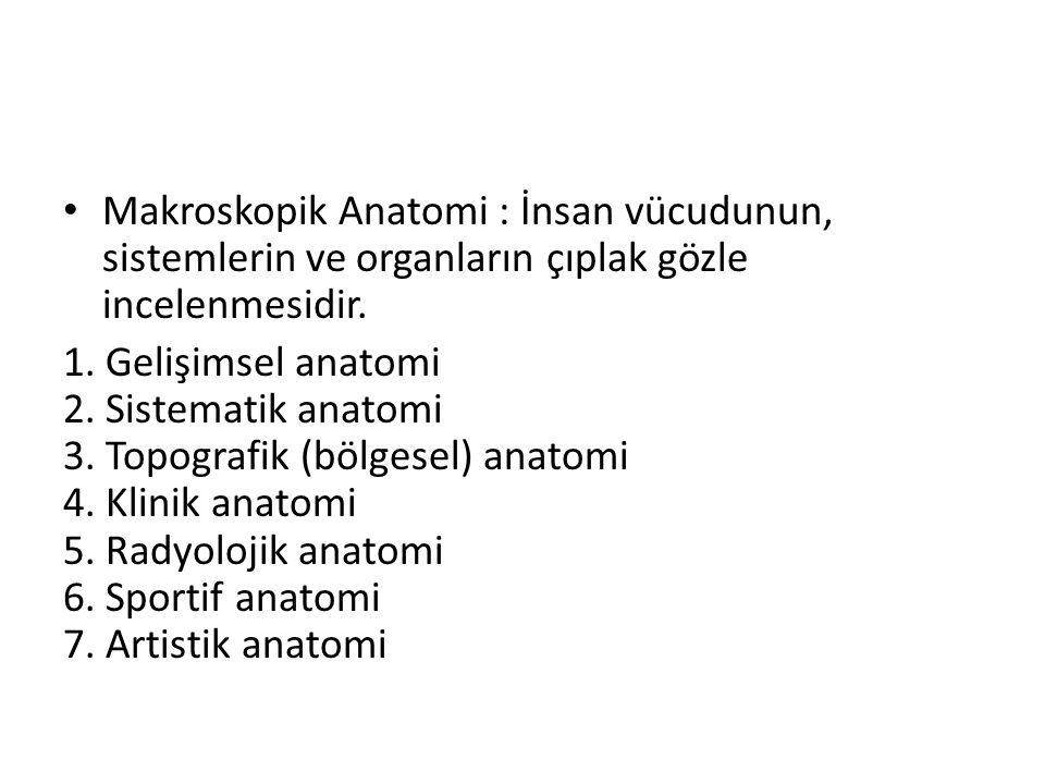 Makroskopik Anatomi : İnsan vücudunun, sistemlerin ve organların çıplak gözle incelenmesidir.