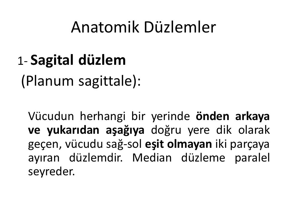Anatomik Düzlemler (Planum sagittale): 1- Sagital düzlem