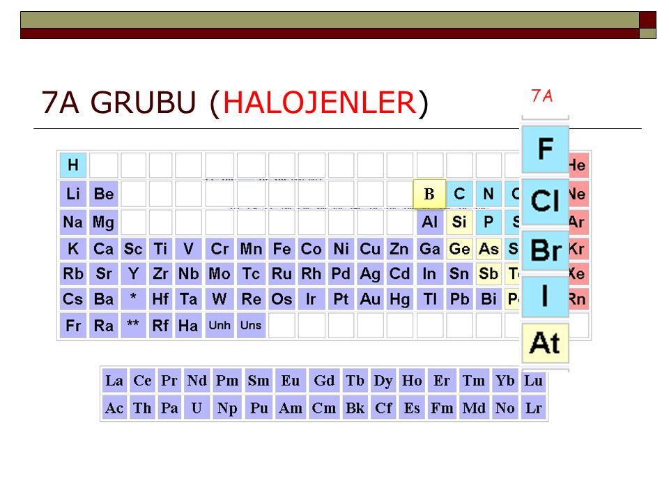 7A GRUBU (HALOJENLER) 7A B