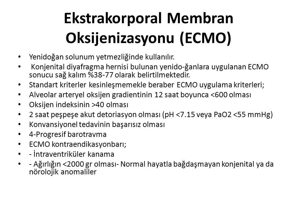Ekstrakorporal Membran Oksijenizasyonu (ECMO)