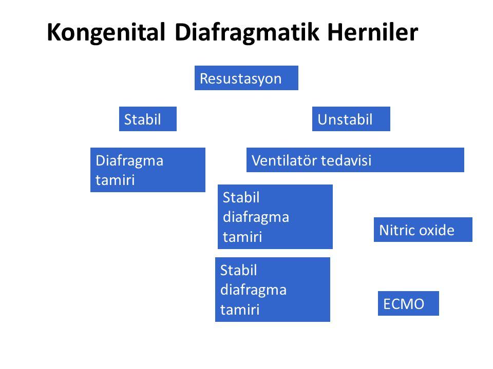 Kongenital Diafragmatik Herniler