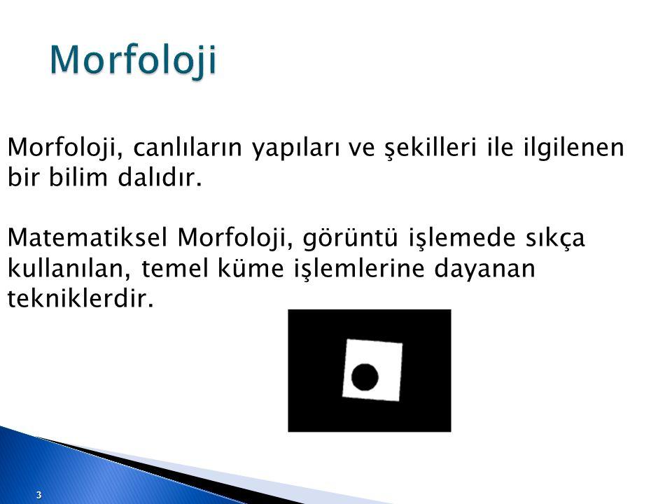 Morfoloji Morfoloji, canlıların yapıları ve şekilleri ile ilgilenen bir bilim dalıdır.