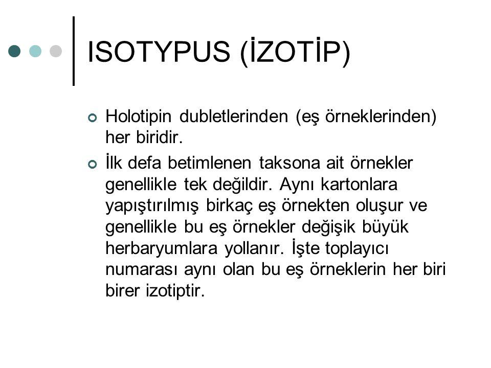 ISOTYPUS (İZOTİP) Holotipin dubletlerinden (eş örneklerinden) her biridir.