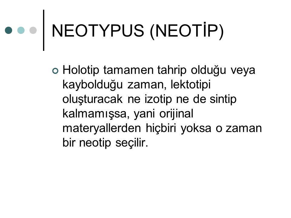 NEOTYPUS (NEOTİP)