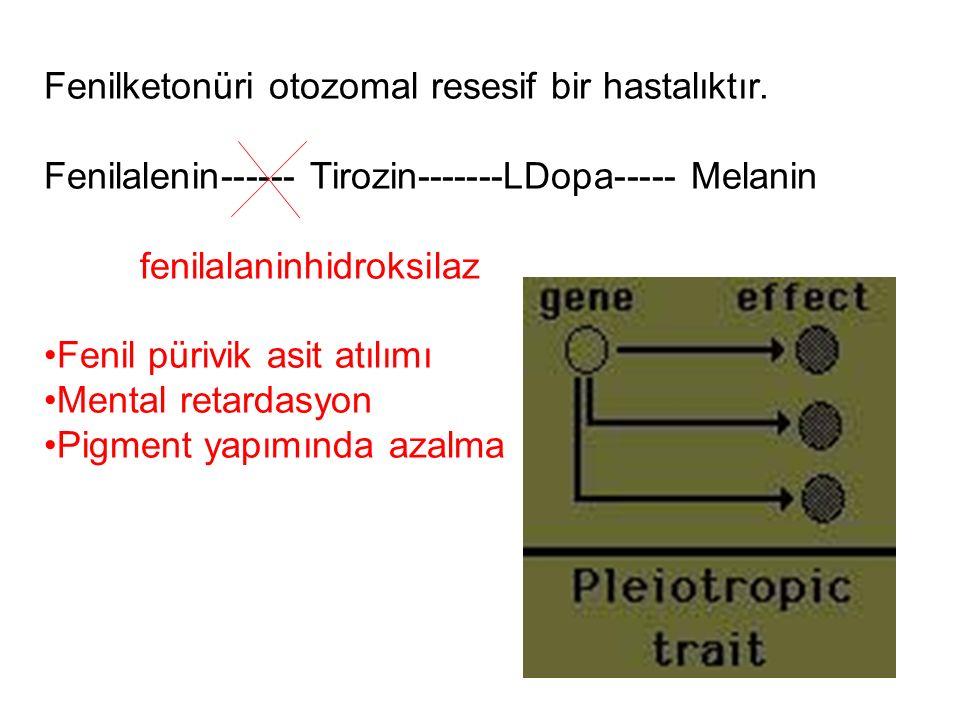 Fenilketonüri otozomal resesif bir hastalıktır.