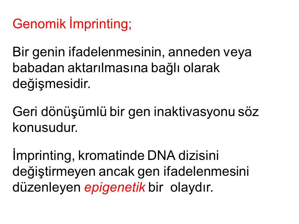 Genomik İmprinting; Bir genin ifadelenmesinin, anneden veya babadan aktarılmasına bağlı olarak değişmesidir.