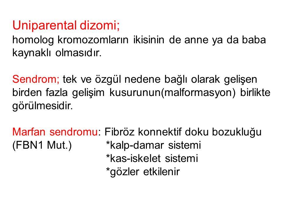 Uniparental dizomi; homolog kromozomların ikisinin de anne ya da baba