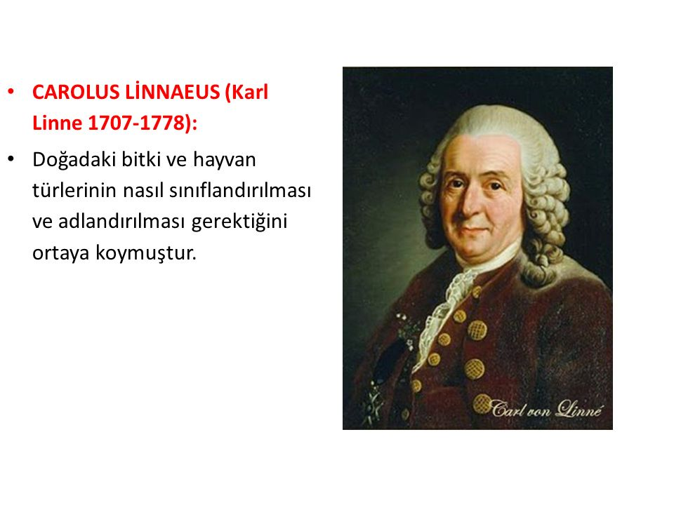CAROLUS LİNNAEUS (Karl Linne 1707-1778):