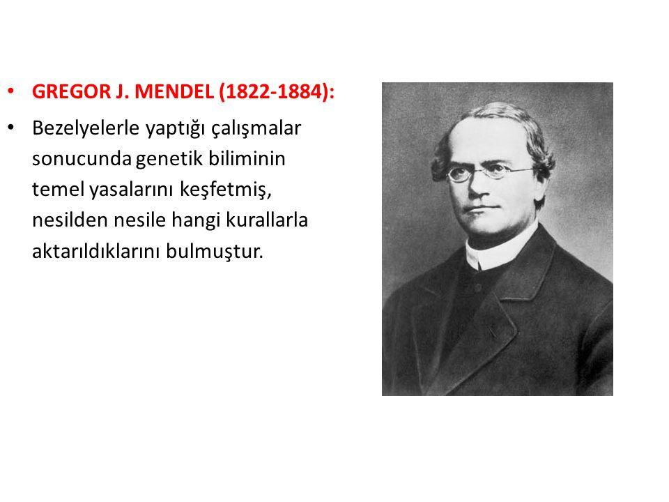 GREGOR J. MENDEL (1822-1884):