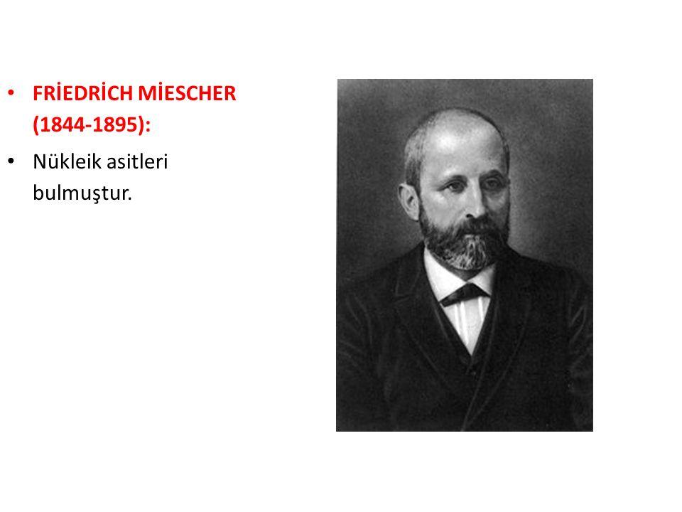 FRİEDRİCH MİESCHER (1844-1895):