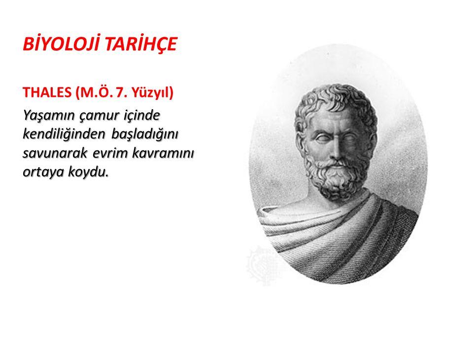 BİYOLOJİ TARİHÇE THALES (M. Ö. 7