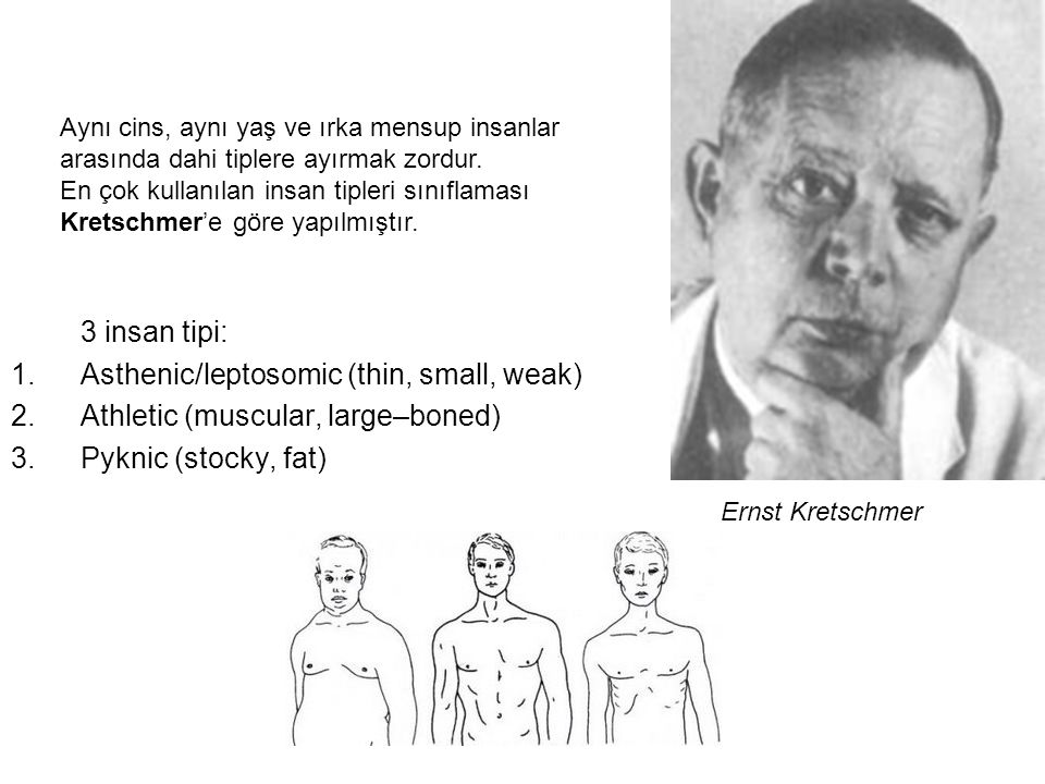 Asthenic/leptosomic (thin, small, weak)